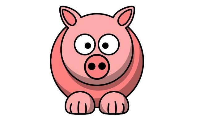 幸運小紅豬生日快閃